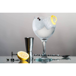 Gin and Fizz Festival