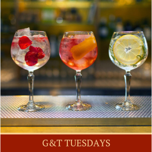G&T Tuesday at The Vane Arms.
