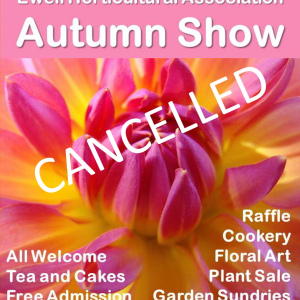 CANCELLED Ewell Horticultural Assoc. – AUTUMN SHOW #Loveyourgarden