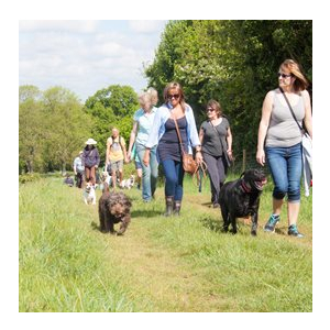 Charity Dog Walk & Breakfast