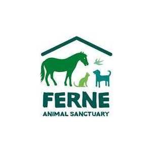 Ferne Animal Sanctuary's annual Fun Dog show