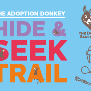 The Donkey Sanctuary Hide & Seek Trail