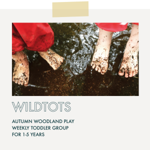 WildTots! GroWild Autumn Forest School