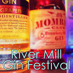 The River Mill Pub Gin Festival - St. Neots