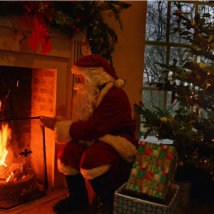Meet Father Christmas at Hestercombe