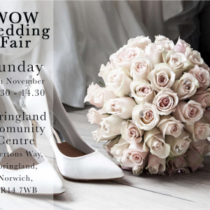 Wow Wedding Fair