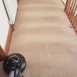 Carpet Cleaning in East Sussex | Carpet Health Upholstery Cleaning