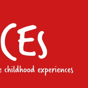 Impact of Adverse Childhood Experiences on brain development in childhood