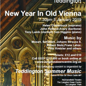 New Year in Old Vienna