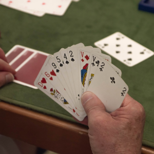 Duplicate Bridge at Sovereign Harbour Bridge Club