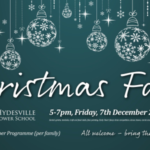 Hydesville Tower School Christmas Fair