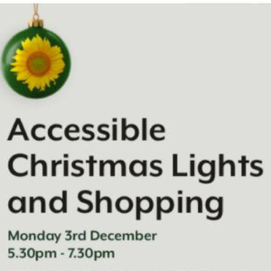 ACCESSIBLE CHRISTMAS LIGHTS AND SHOPPING