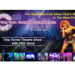 The Tina Turner Experience – Simple the Best