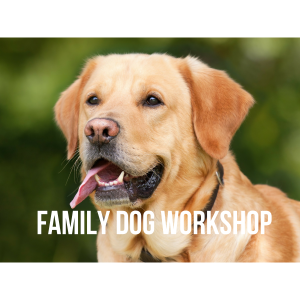 Family Dog Workshop, Godmanchester 2019