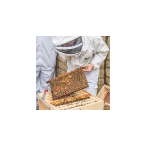 1-2-1 Beekeeper for a Day Exclusive Gift Experience