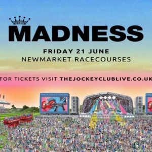 Madness at Newmarket Racecourses
