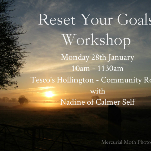Reset Your Goals workshop