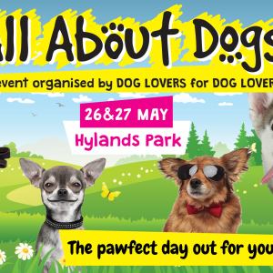 All About Dogs Show Hylands