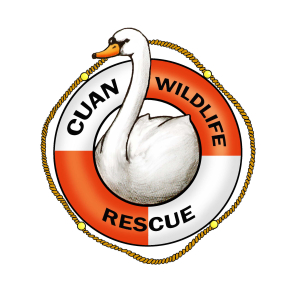 Cuan Wildlife Rescue Annual Open Day & Fun Dog Show