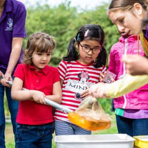 Guided Pond Dipping Sessions
