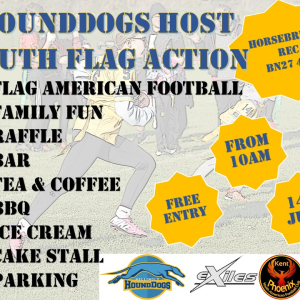 HoundDogs host Flag Team Action