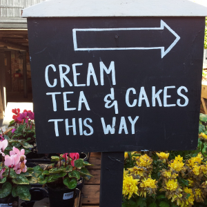Sunday and Bank Holiday Cream Teas at Mill Green Museum & Mill