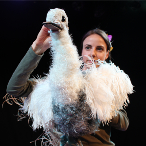 The Goose Who Flew at Big Dreamers Festival