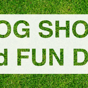 Guild Care's Dog Show and Fun Day