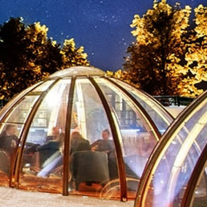 THE DOMES AT THE DUKE