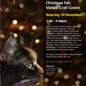 Basinstoke and District Cats Protection Christmas Fayre