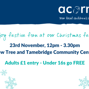Acorns Children's Hospice Christmas Fete