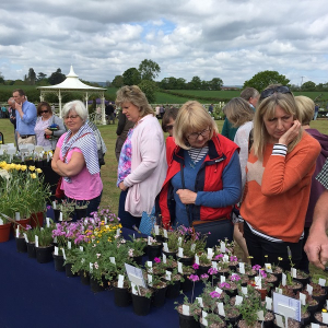 Plant Hunters' Fair at the British Ironwork Centre on Saturday 16th May