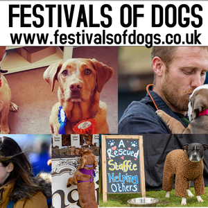 The London Festivals of Dogs