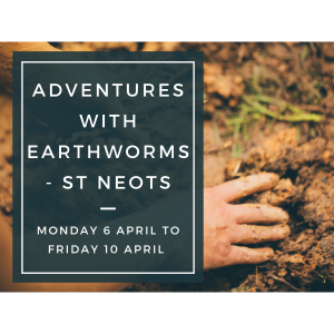 Adventures With Earthworms - St Neots