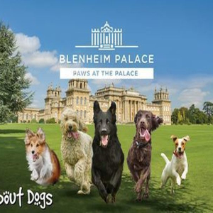 All About Dogs Show - Paws at the Palace 2020