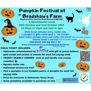 Pumpkin Festival at Bradshaw's Farm, Burntwood