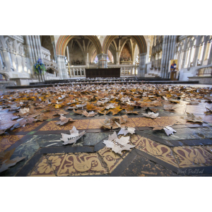 The Leaves of the Trees - Lichfield Cathedral