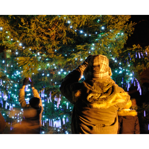 Carols around the tree - Lichfield Cathedral