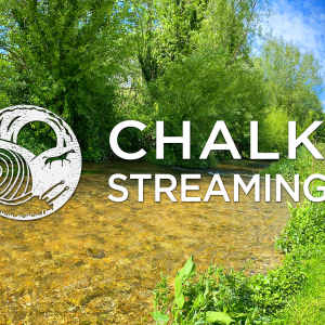 Nature Walk: Chalk Streaming - River Kennet