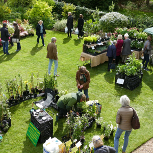 Winchester Go LD Garden & Craft Fair