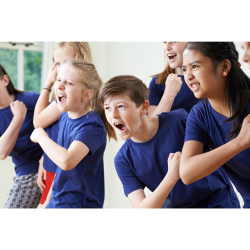 Youth Theatre Group - Taster Session