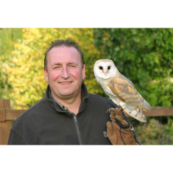 Awesome Owls (children's event for ages 8 – 12)
