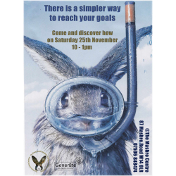 The Bunny Rabbit Solution Free Seminar