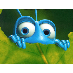 Half Term Film: A Bug's Life
