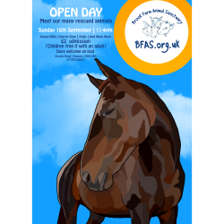 Brook Farm Animal Sanctuary Open Day