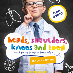 Heads, Shoulders, Knees and Toes: A Journey Through the Human Body