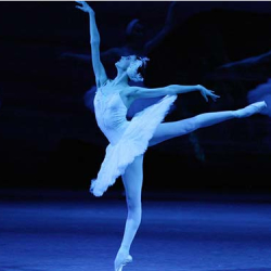 Swan Lake Live from the Bolshoi Theatre, Moscow
