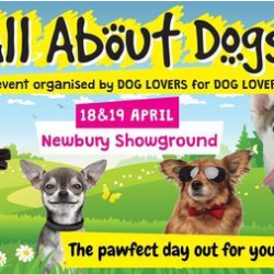 All About Dogs Show Newbury 2020