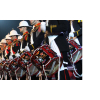 Royal Marines Band Service 10th Birthday Charity Concert