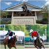 Guards Polo Club Opens Doors for Hildon Archie David Cup Final to Help Fund a Cure for Paralysis